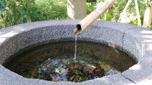 Quellwasser als Grundlage für Gesundheit und eine schöne Haut
